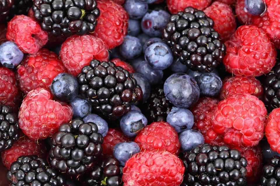 014 Beth Linsky & Dale Ila-Riggs | Berries