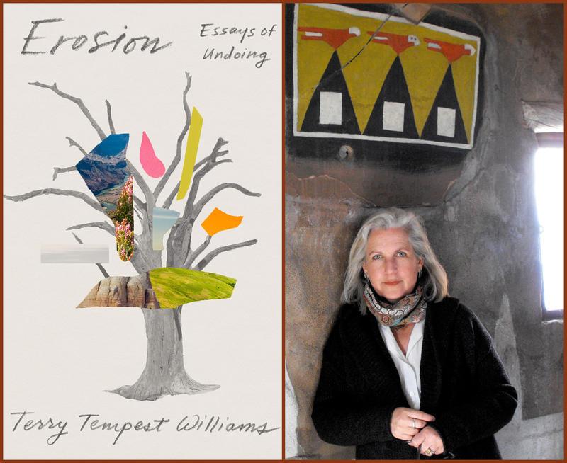 "#1629: Terry Tempest Williams ""Erosion: Essays of Undoing"""