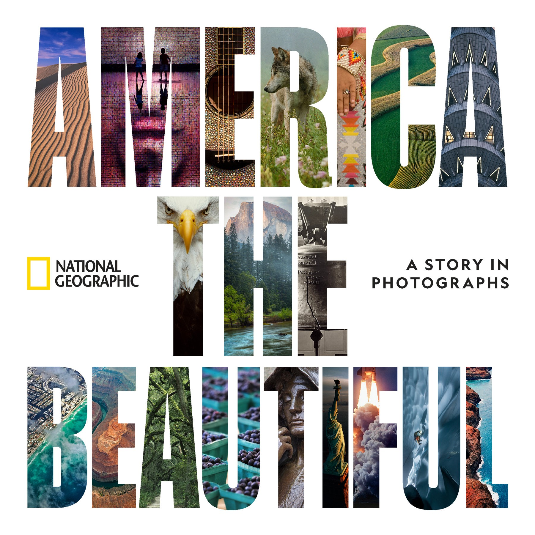 America The Beautiful | Susan Goldberg